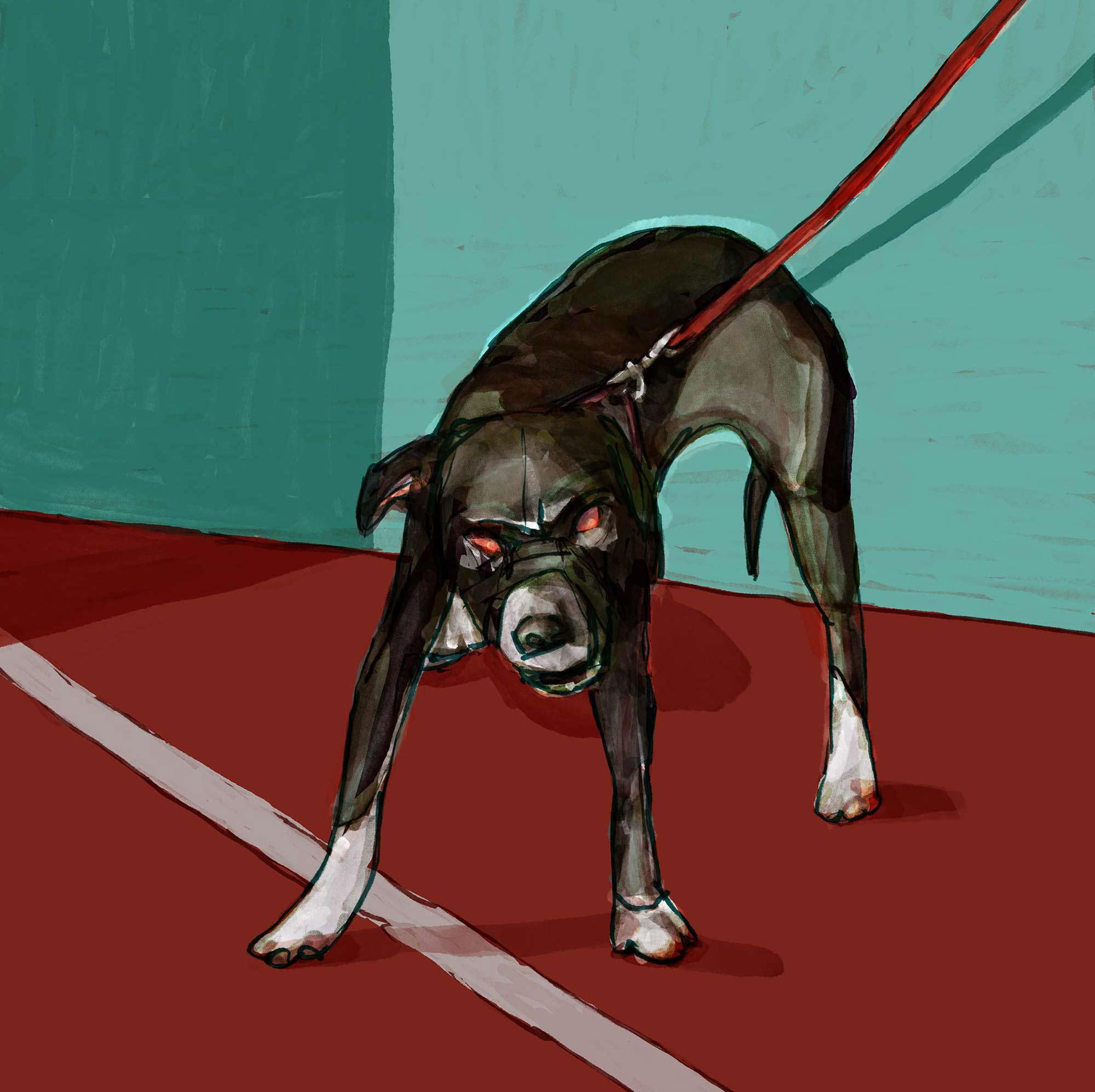 Mario Jodra illustration Art - A dog